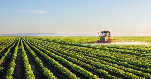 سال سختی در انتظار کشاورزان است