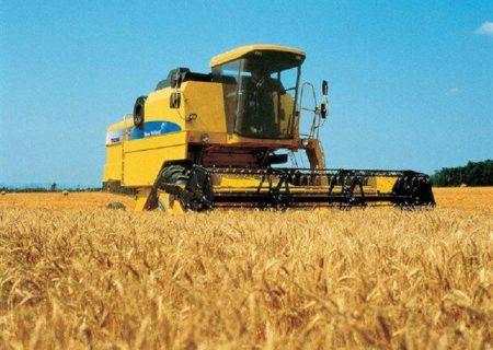 خرید بیش از ۸۰ هزار تن گندم از کشاورزان شوش