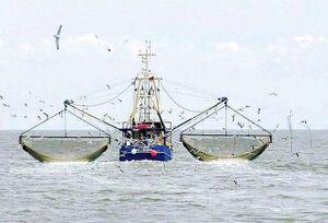 توقیف دو کشتی صید ترال در آبهای چابهار توسط سپاه
