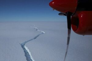 کشف موجودات دریایی که ۵۰ سال زیر یخ پنهان بودند