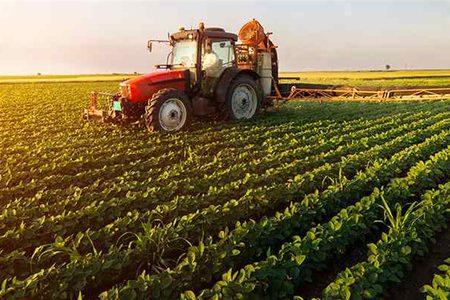 شوش قطبی اصلی کشاورزی خوزستان